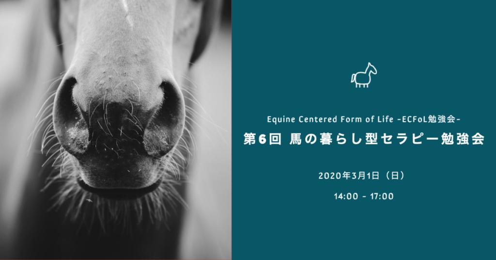 第6回 馬の暮らし型セラピー勉強会 -ECFoL勉強会-