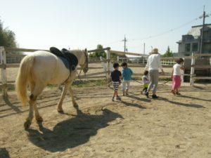 馬と人をつなぐ仕事