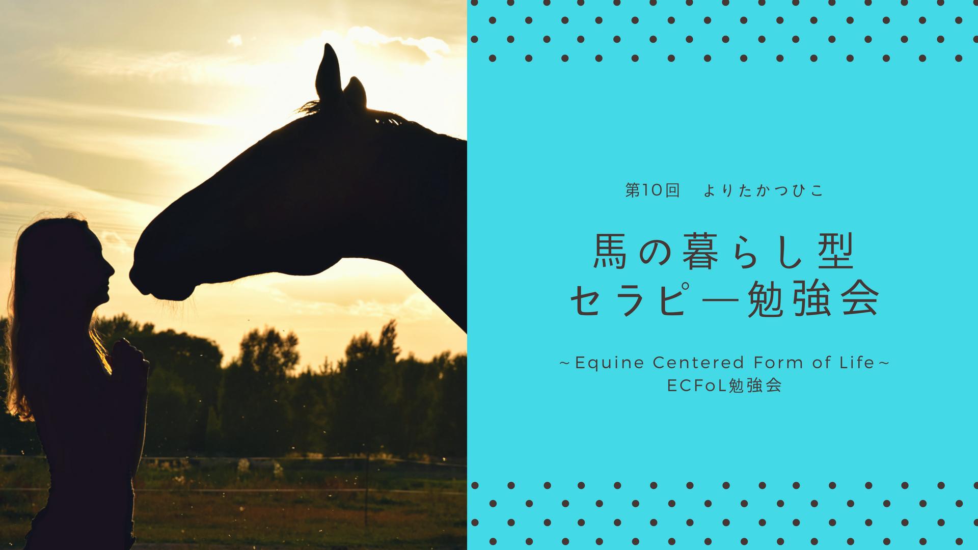 第10回 馬の暮らし型セラピー勉強会