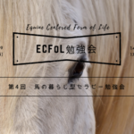 第4回 ECFoL勉強会